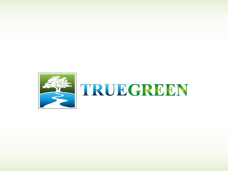 Logo Design by Private User - Entry No. 65 in the Logo Design Contest Fun Logo Design for TRUE GREEN.