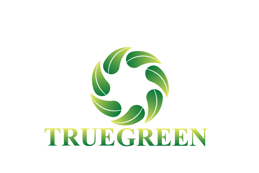 Logo Design by brands_in - Entry No. 72 in the Logo Design Contest Fun Logo Design for TRUE GREEN.