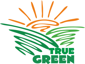 Logo Design by Private User - Entry No. 74 in the Logo Design Contest Fun Logo Design for TRUE GREEN.