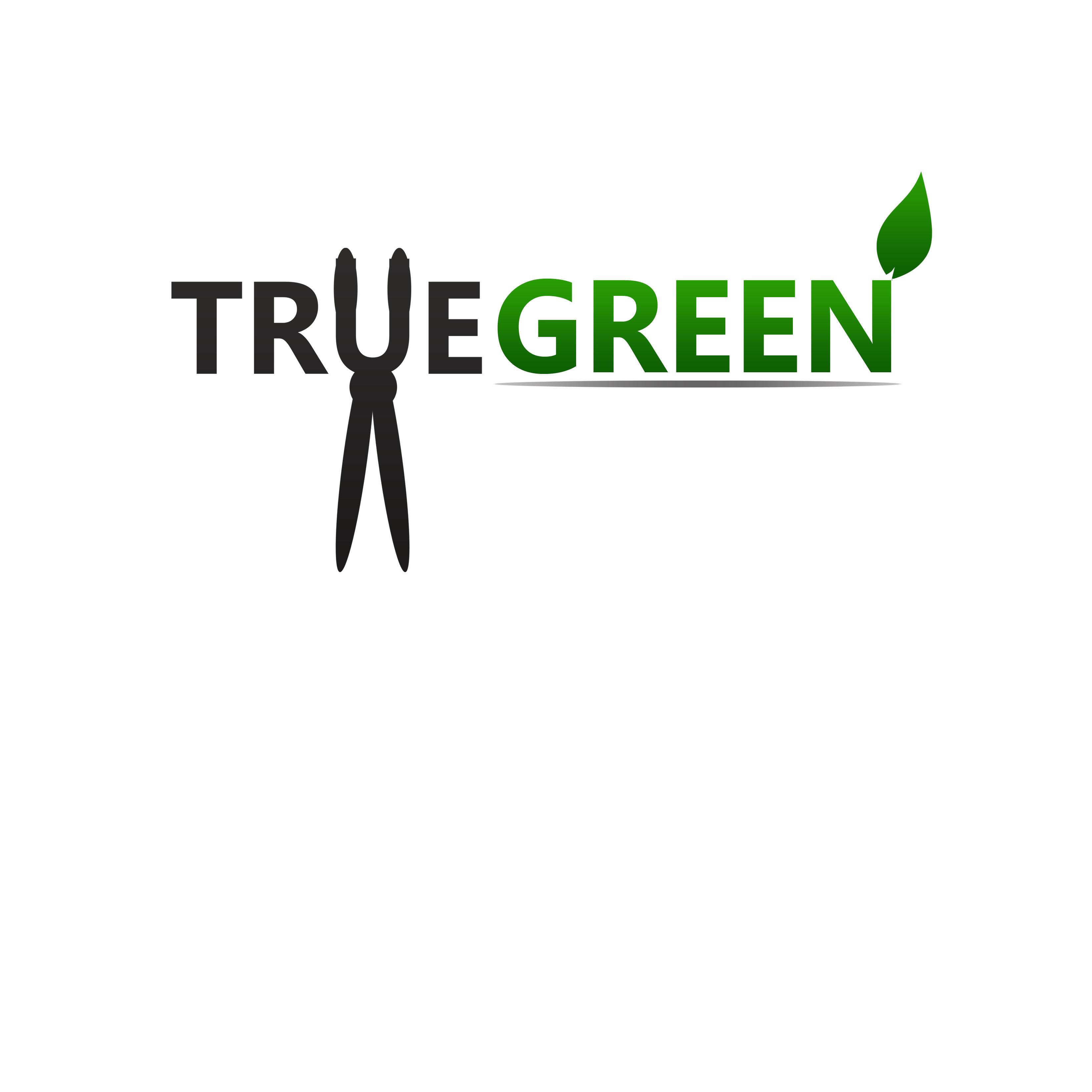 Logo Design by Allan Esclamado - Entry No. 76 in the Logo Design Contest Fun Logo Design for TRUE GREEN.