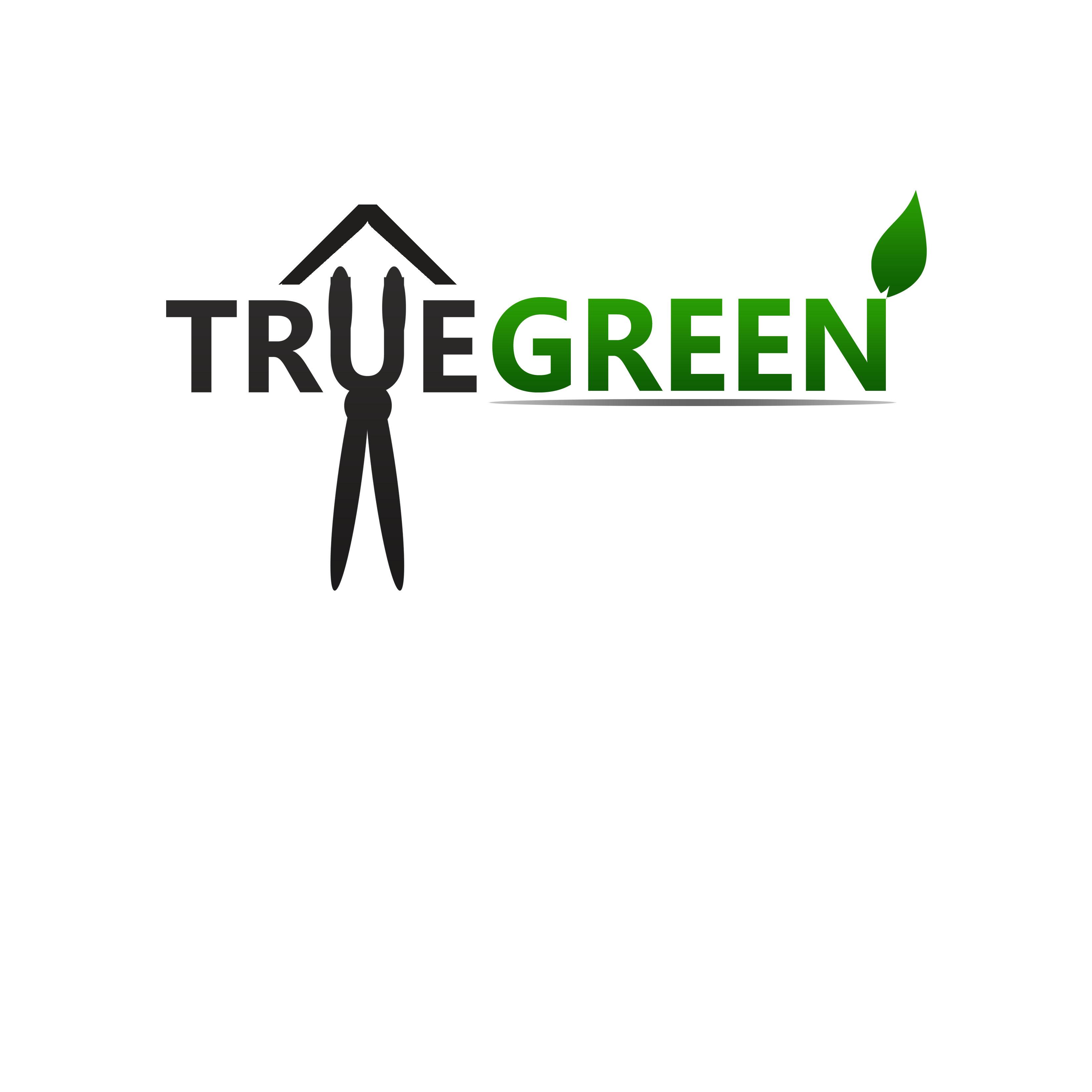 Logo Design by Allan Esclamado - Entry No. 79 in the Logo Design Contest Fun Logo Design for TRUE GREEN.