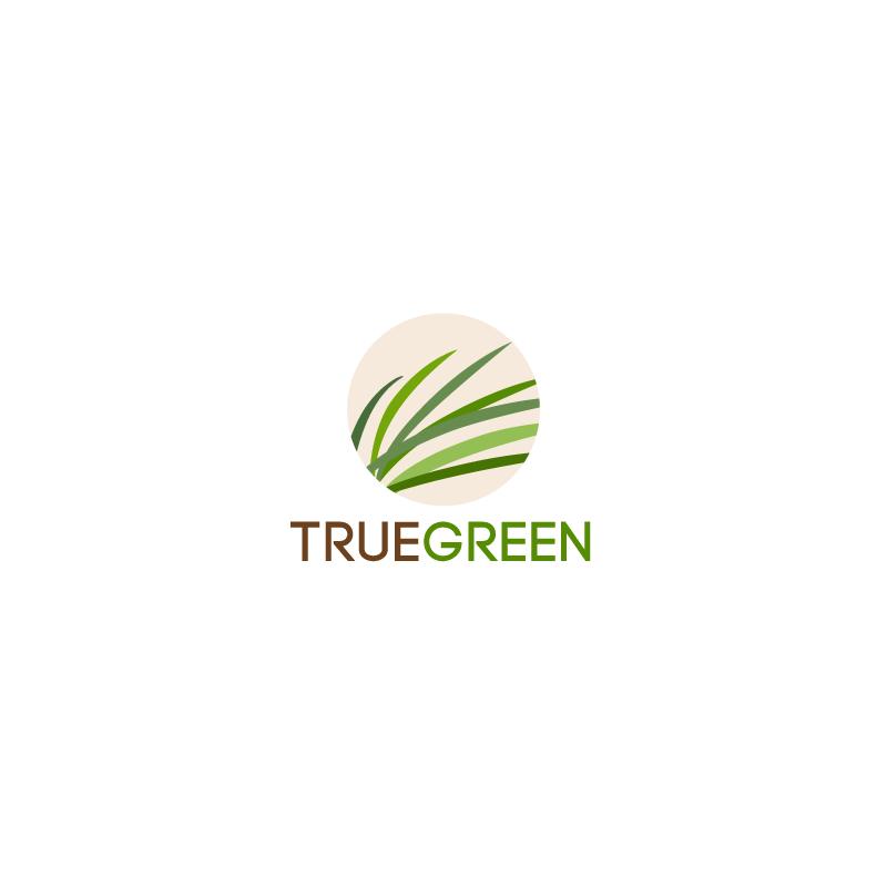 Logo Design by superclassic - Entry No. 98 in the Logo Design Contest Fun Logo Design for TRUE GREEN.