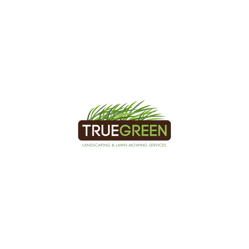 Logo Design by superclassic - Entry No. 103 in the Logo Design Contest Fun Logo Design for TRUE GREEN.