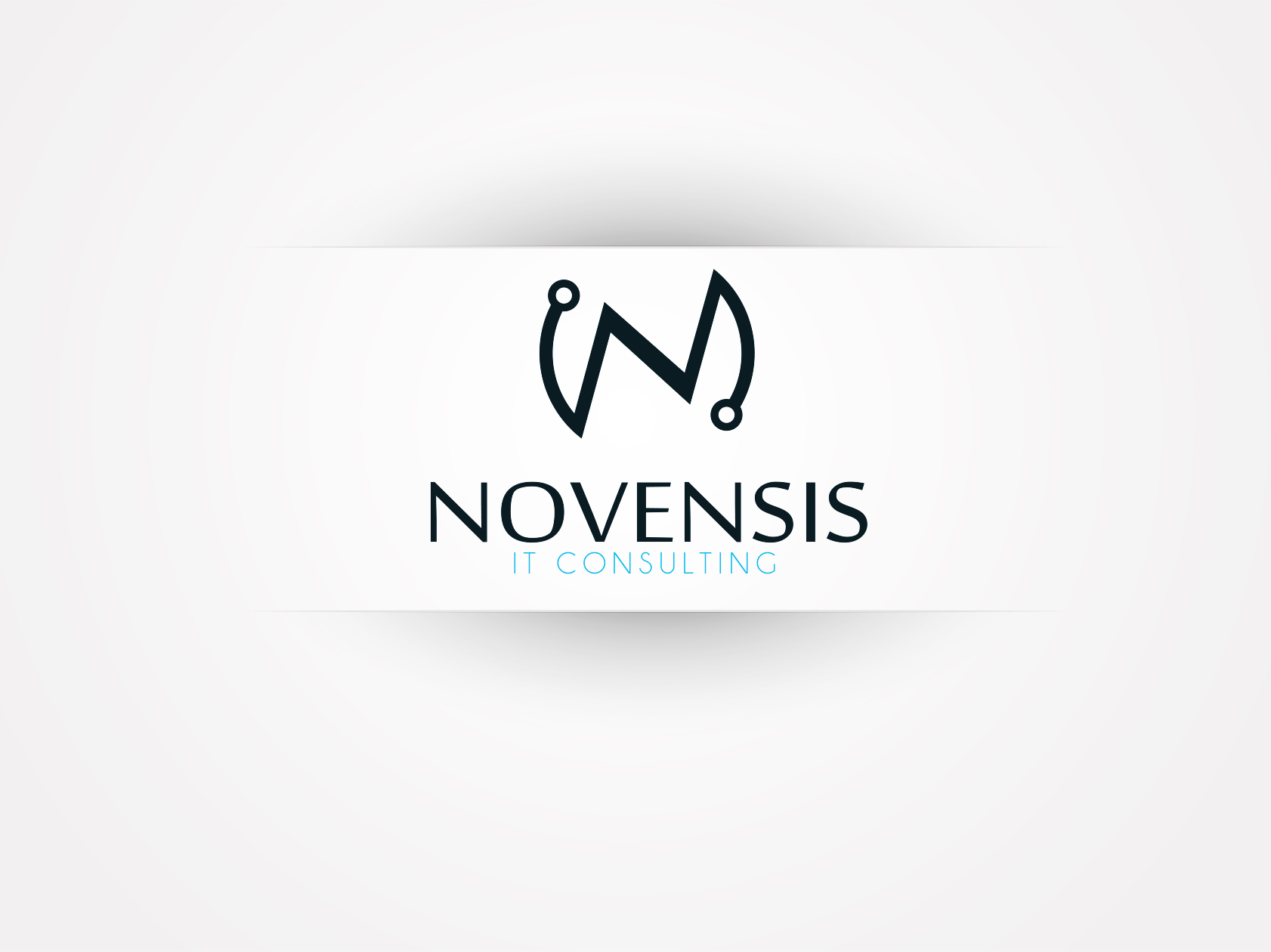Logo Design by OmegaDesigns - Entry No. 154 in the Logo Design Contest Novensis Logo Design.