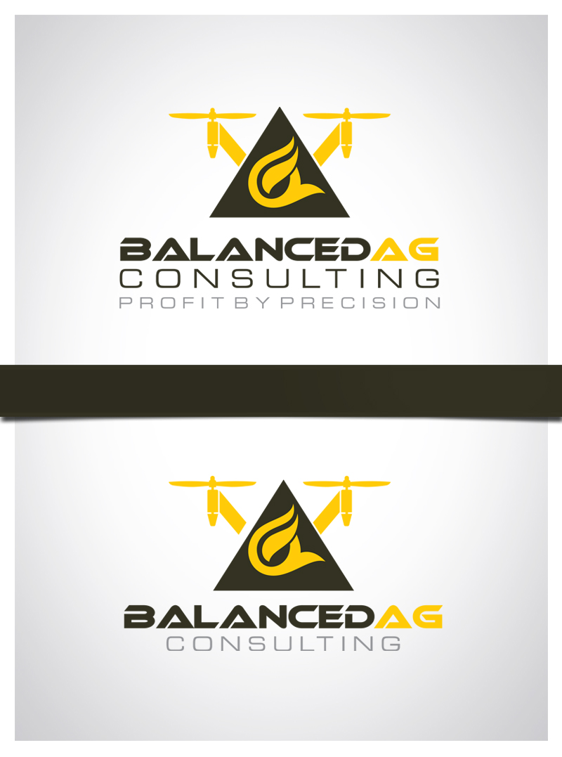Logo Design by Puspita Wahyuni - Entry No. 66 in the Logo Design Contest Captivating Logo Design for Balanced Ag Consulting.