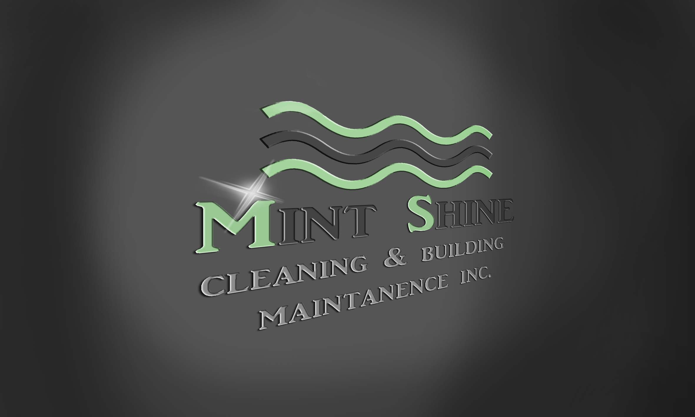 Logo Design by Daniella Eisenberg - Entry No. 13 in the Logo Design Contest New Logo Design for mintSHINE cleaning and building maintenance.