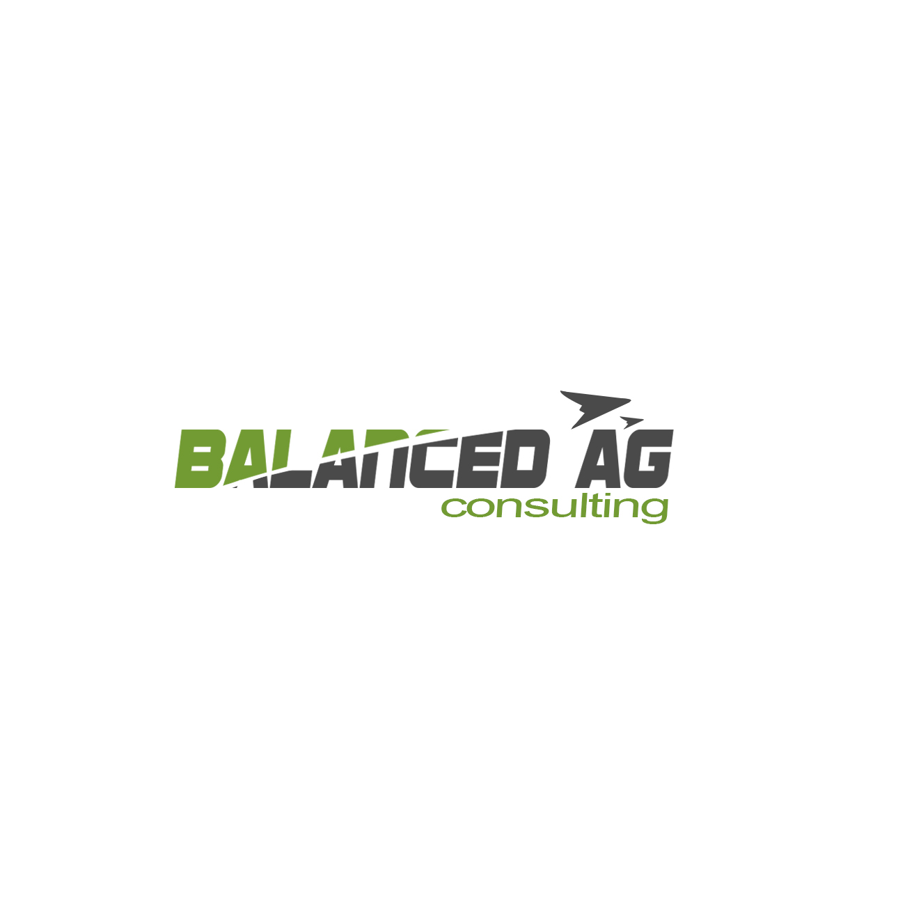 Logo Design by Private User - Entry No. 119 in the Logo Design Contest Captivating Logo Design for Balanced Ag Consulting.