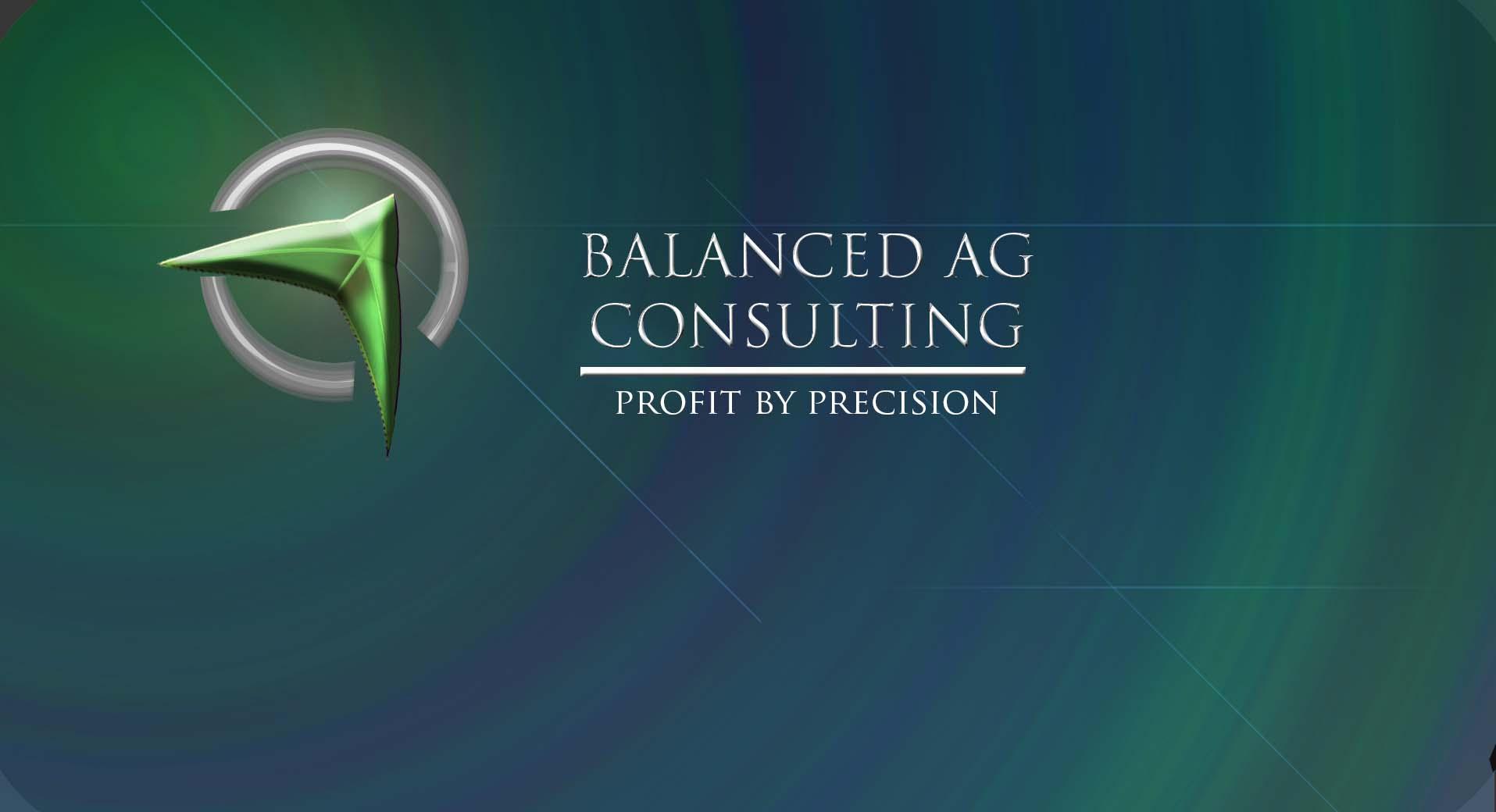 Logo Design by Daniella Eisenberg - Entry No. 221 in the Logo Design Contest Captivating Logo Design for Balanced Ag Consulting.