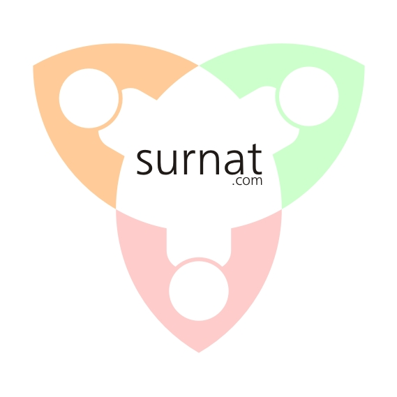 Logo Design by Private User - Entry No. 15 in the Logo Design Contest Surnat.com.