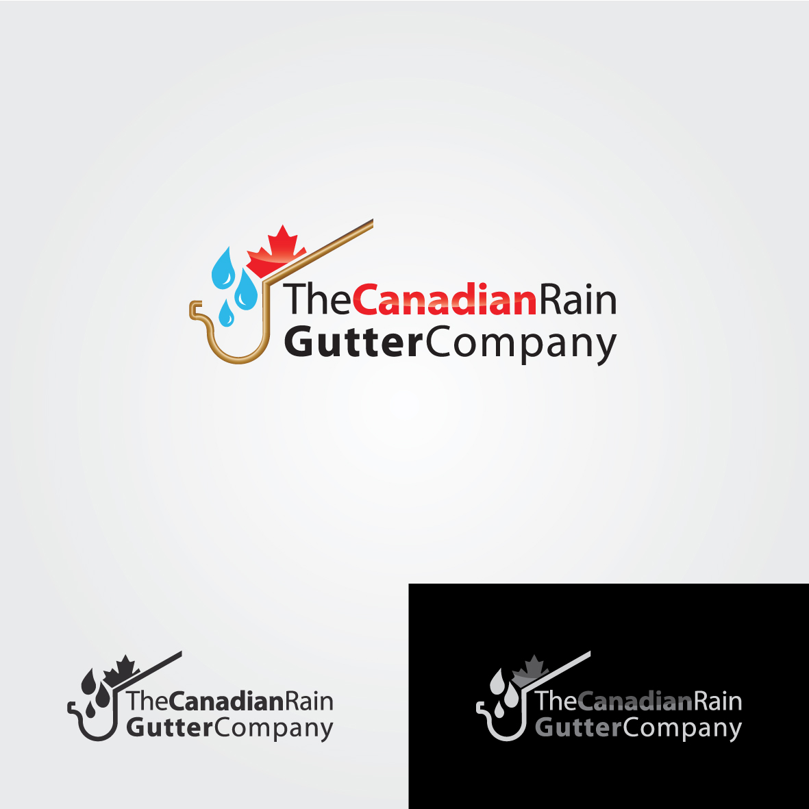 Logo Design by ex - Entry No. 11 in the Logo Design Contest The Canadian Rain Gutter Company.
