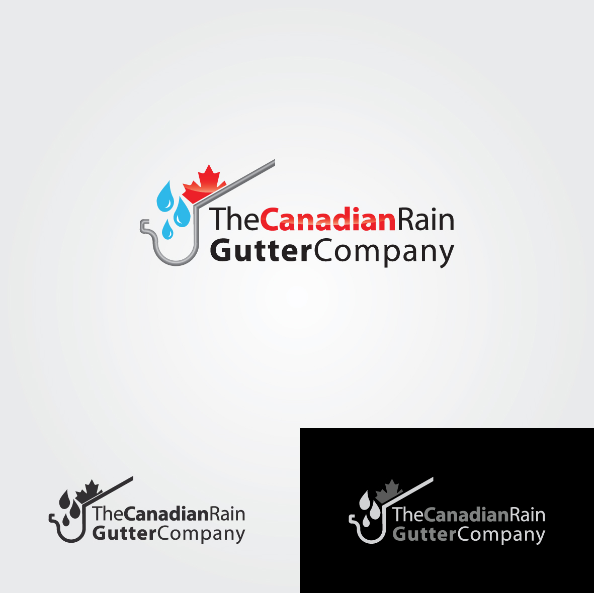 Logo Design by ex - Entry No. 12 in the Logo Design Contest The Canadian Rain Gutter Company.