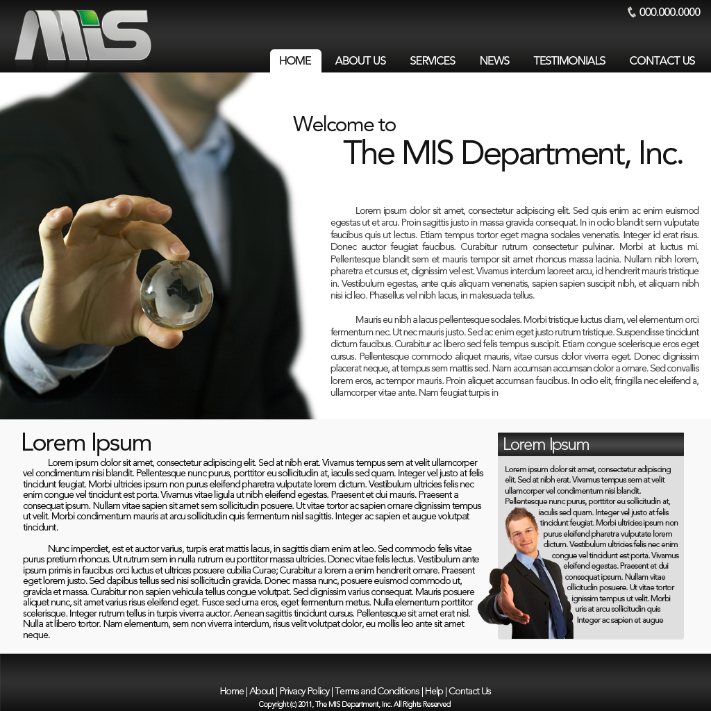 Web Page Design by bambino - Entry No. 90 in the Web Page Design Contest MIS (public website) – IT and Management consulting firm.
