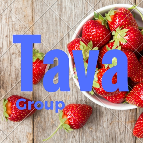 Logo Design by Vipul Vaghela - Entry No. 241 in the Logo Design Contest Creative Logo Design for Tava Group.
