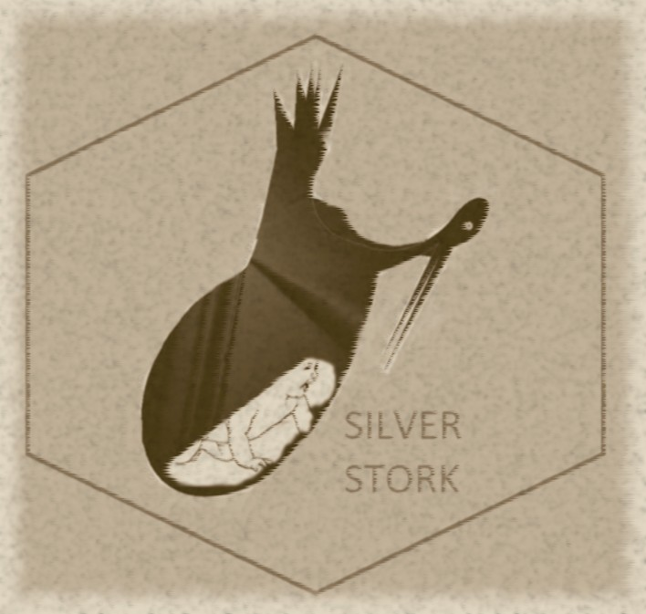 Logo Design by VAC ATV - Entry No. 10 in the Logo Design Contest SilverStork.