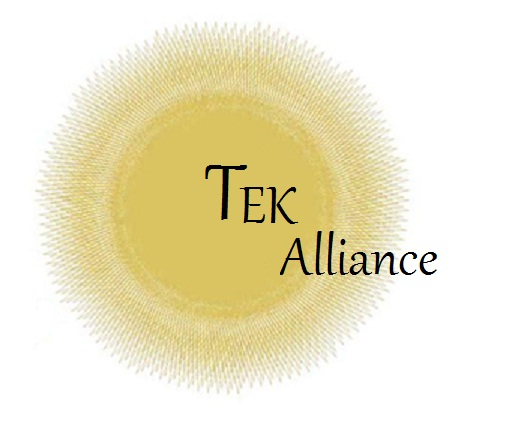 Logo Design by VAC ATV - Entry No. 6 in the Logo Design Contest TEK Alliance.