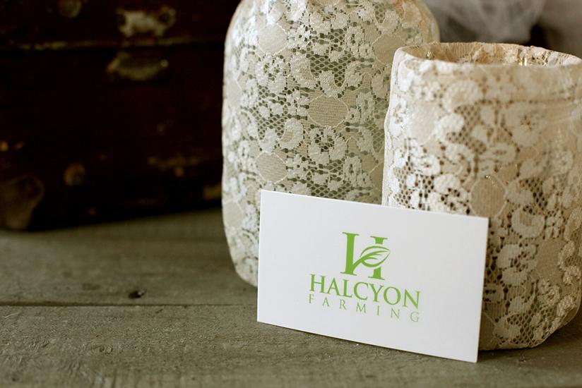 Logo Design by Mohammad azad Hossain - Entry No. 119 in the Logo Design Contest Creative Logo Design for Halcyon Farming.