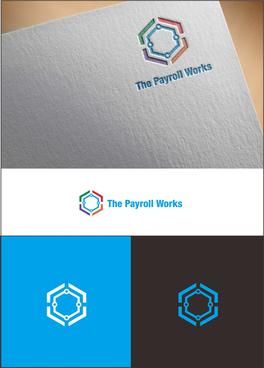 Logo Design by ian69 - Entry No. 26 in the Logo Design Contest Captivating Logo Design for The Payroll Works.