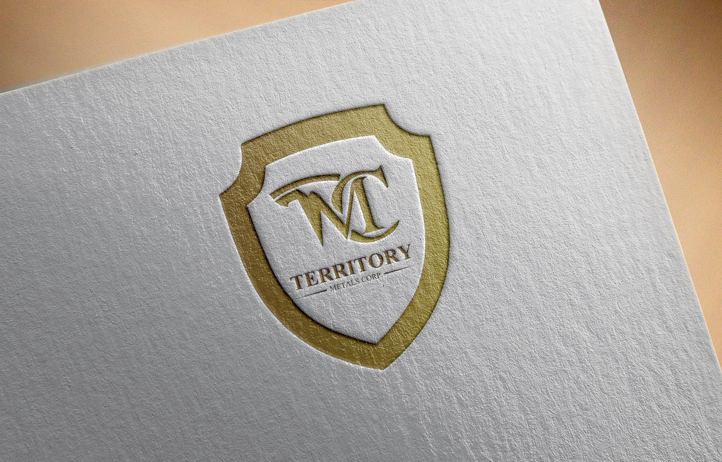 Logo Design by MD ZAHIR RAIHAN - Entry No. 59 in the Logo Design Contest Unique Logo Design Wanted for Territory Metals Corp..