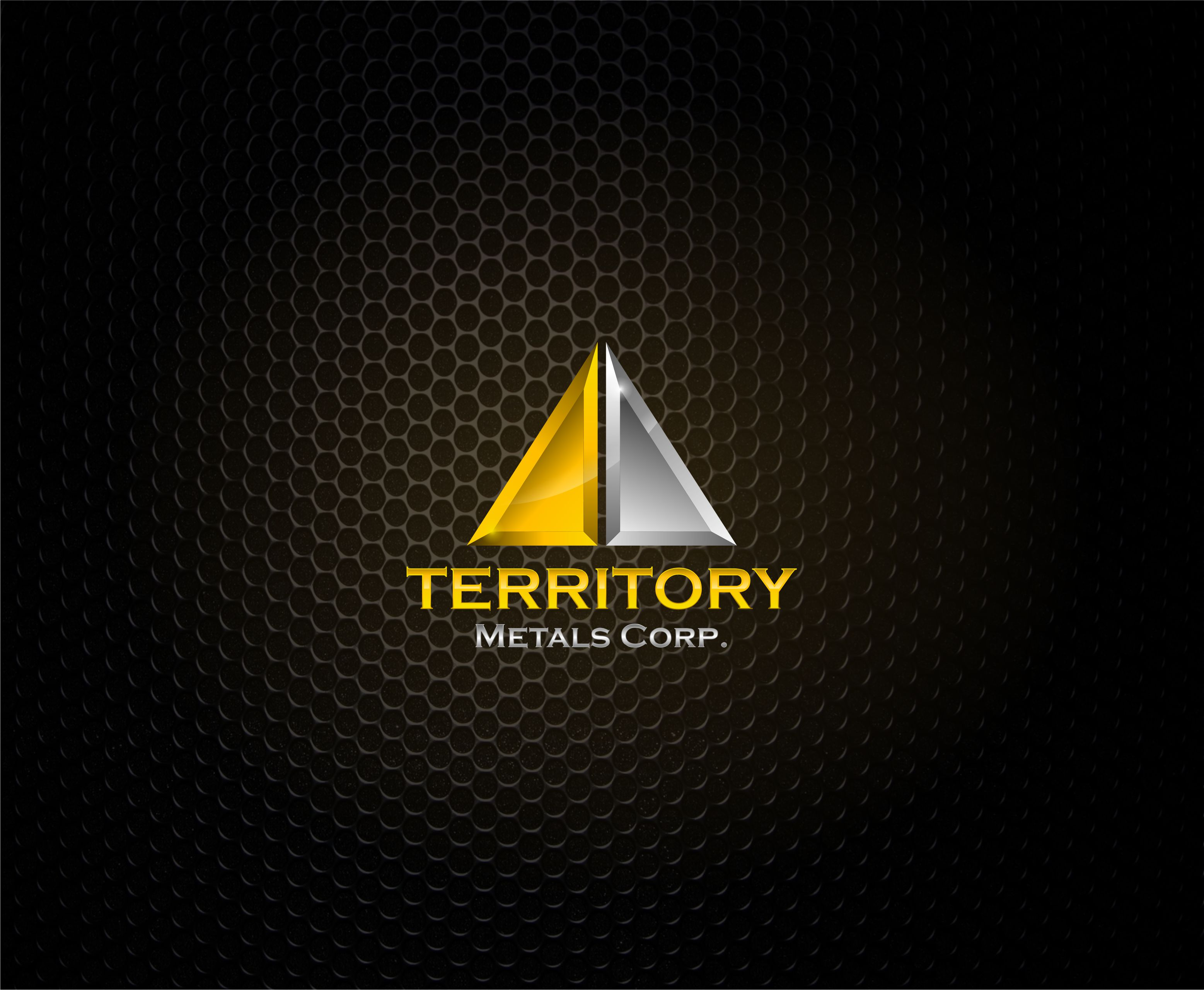 Logo Design by Raymond Garcia - Entry No. 95 in the Logo Design Contest Unique Logo Design Wanted for Territory Metals Corp..