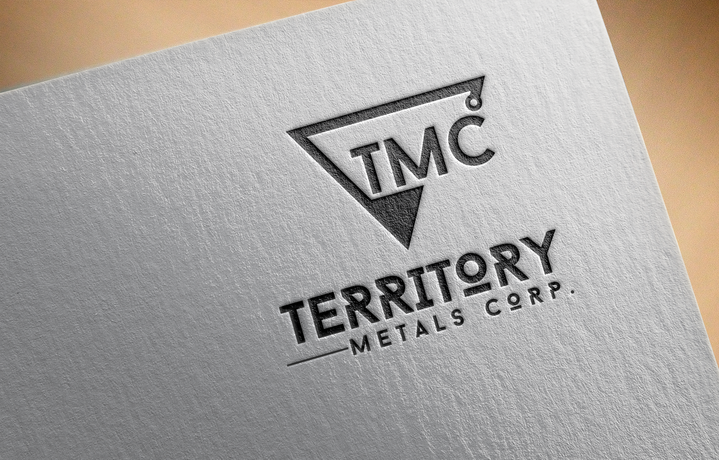 Logo Design by Prohor Ghagra - Entry No. 106 in the Logo Design Contest Unique Logo Design Wanted for Territory Metals Corp..