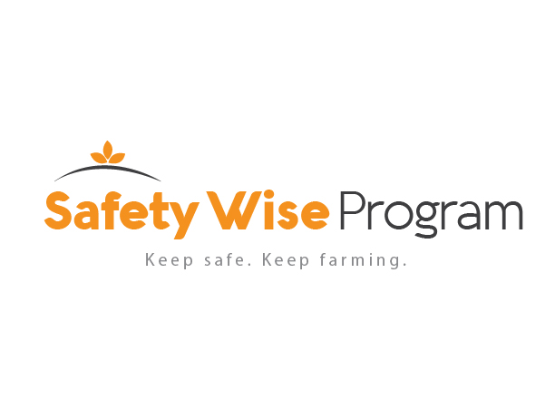 Logo Design by ipog - Entry No. 15 in the Logo Design Contest New Logo Design for Safety Wise Program.