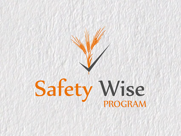 Logo Design by Inno - Entry No. 39 in the Logo Design Contest New Logo Design for Safety Wise Program.
