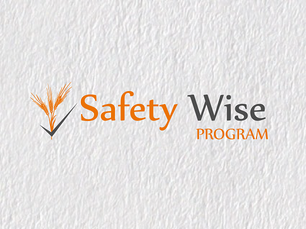 Logo Design by Inno - Entry No. 40 in the Logo Design Contest New Logo Design for Safety Wise Program.