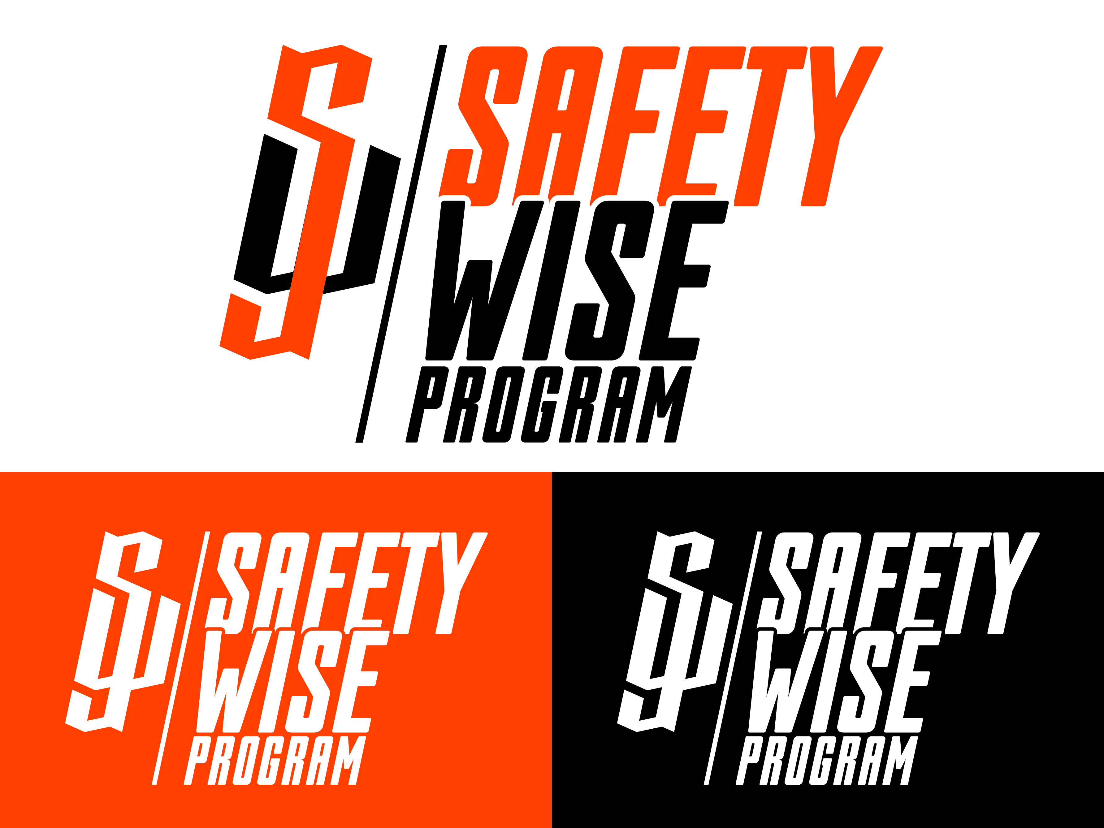 Logo Design by Rob King - Entry No. 41 in the Logo Design Contest New Logo Design for Safety Wise Program.