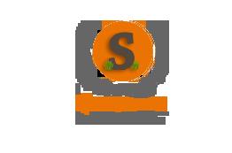 Logo Design by Sandip Kumar Pandey - Entry No. 42 in the Logo Design Contest New Logo Design for Safety Wise Program.