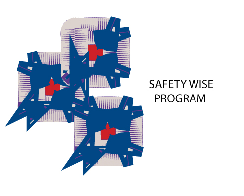 Logo Design by fari - Entry No. 51 in the Logo Design Contest New Logo Design for Safety Wise Program.