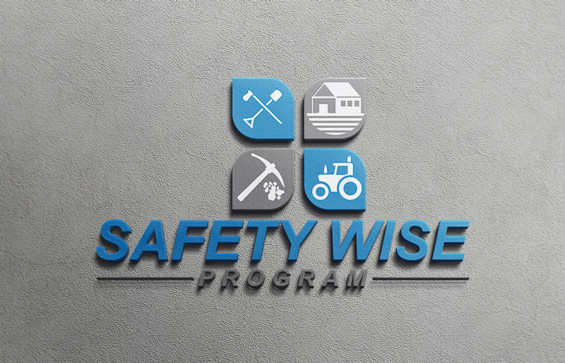 Logo Design by Imtiaz Hossain - Entry No. 87 in the Logo Design Contest New Logo Design for Safety Wise Program.