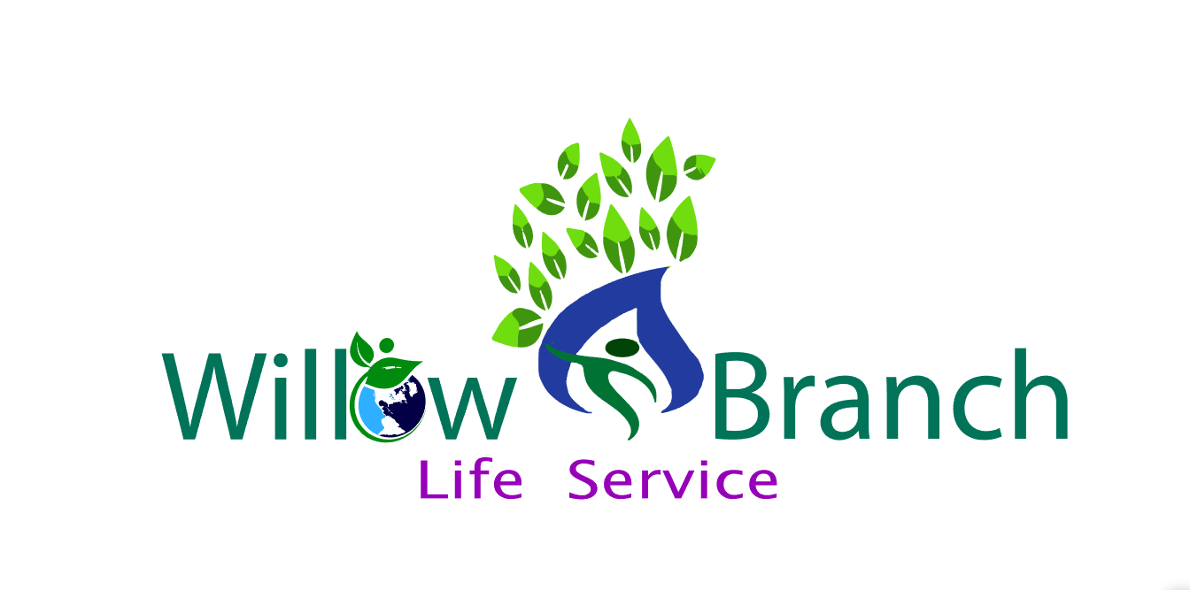 Logo Design by Private User - Entry No. 84 in the Logo Design Contest Artistic Logo Design for Willow Branch Life Service.