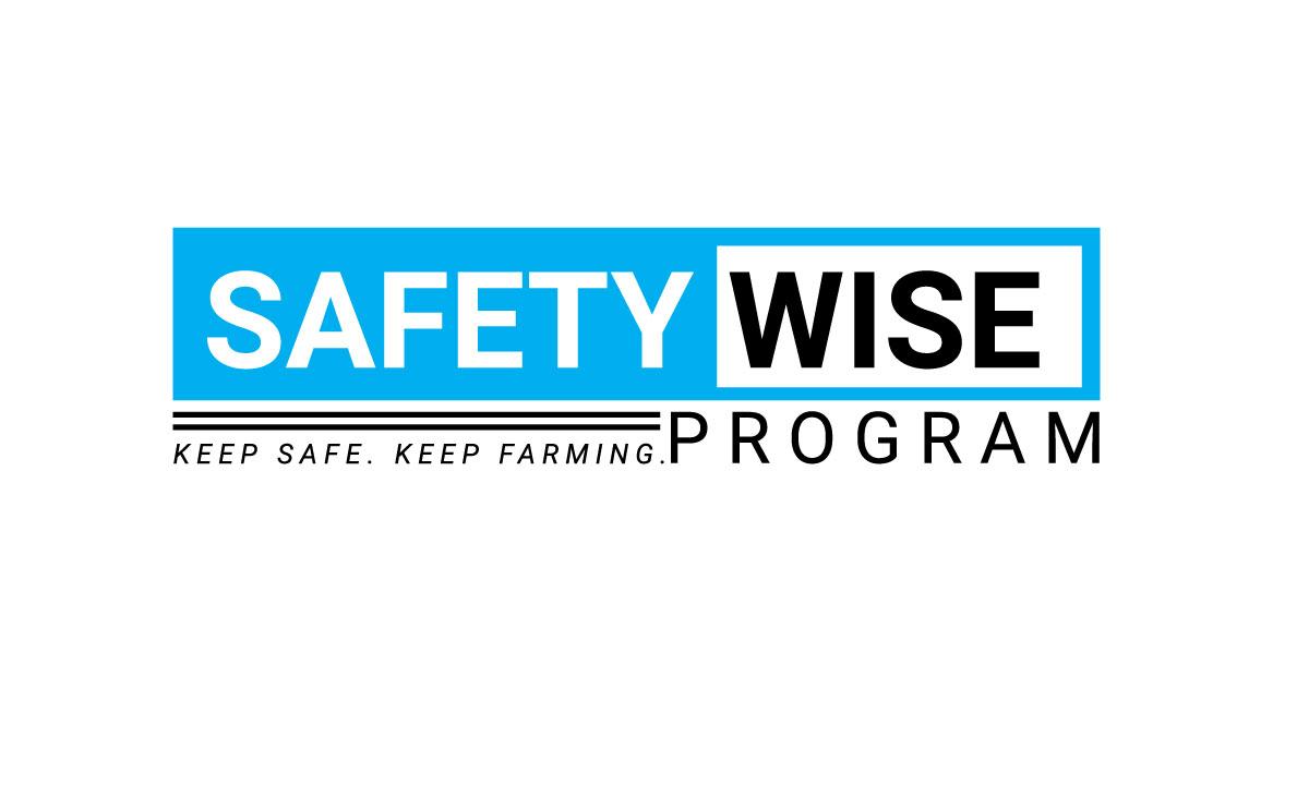 Logo Design by MD ZAHIR RAIHAN - Entry No. 134 in the Logo Design Contest New Logo Design for Safety Wise Program.