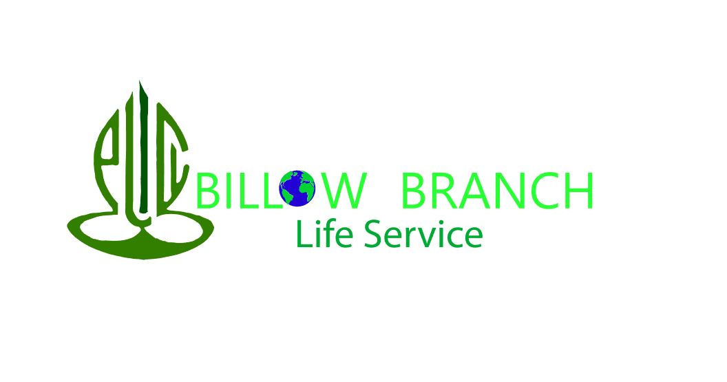Logo Design by Private User - Entry No. 134 in the Logo Design Contest Artistic Logo Design for Willow Branch Life Service.