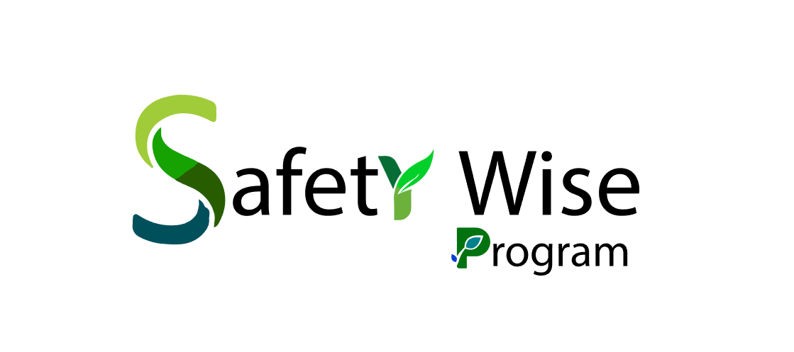 Logo Design by Private User - Entry No. 171 in the Logo Design Contest New Logo Design for Safety Wise Program.