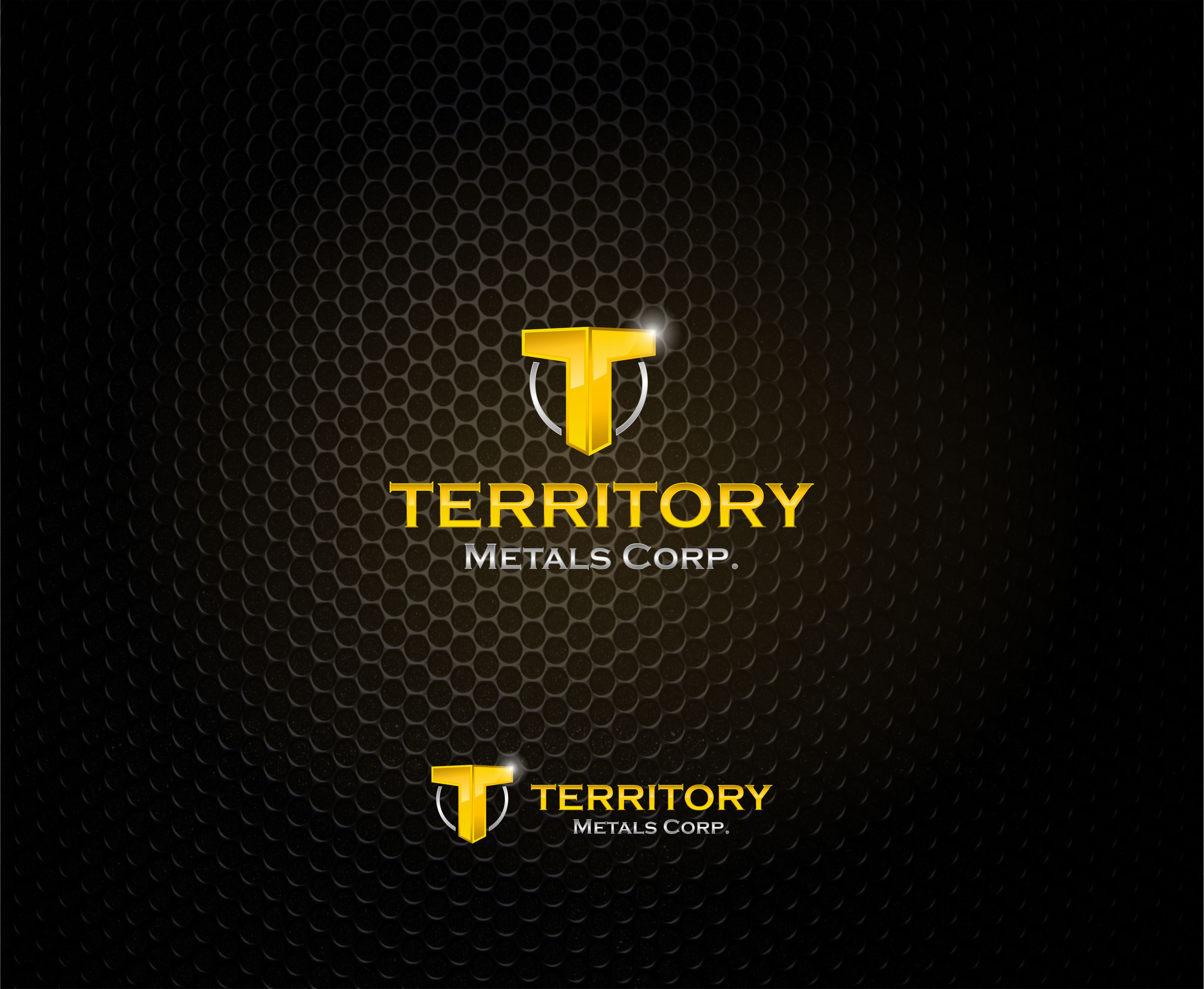 Logo Design by Raymond Garcia - Entry No. 157 in the Logo Design Contest Unique Logo Design Wanted for Territory Metals Corp..