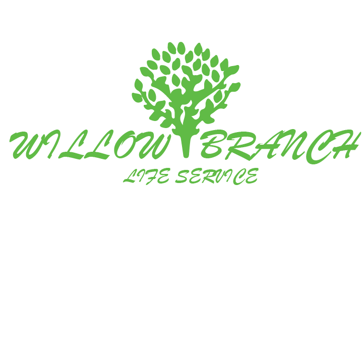 Logo Design by Hassan Kaimkhani - Entry No. 264 in the Logo Design Contest Artistic Logo Design for Willow Branch Life Service.