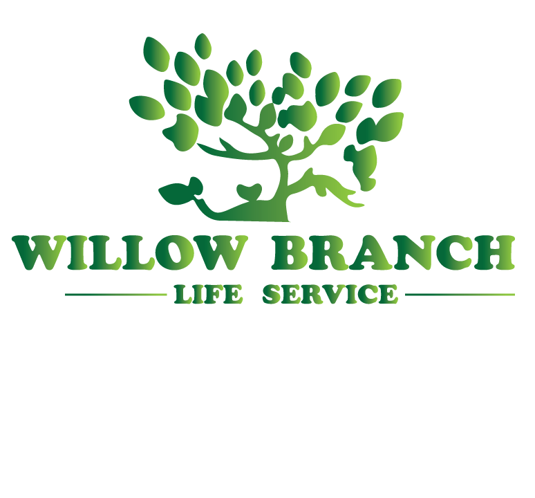 Logo Design by Hassan Kaimkhani - Entry No. 295 in the Logo Design Contest Artistic Logo Design for Willow Branch Life Service.