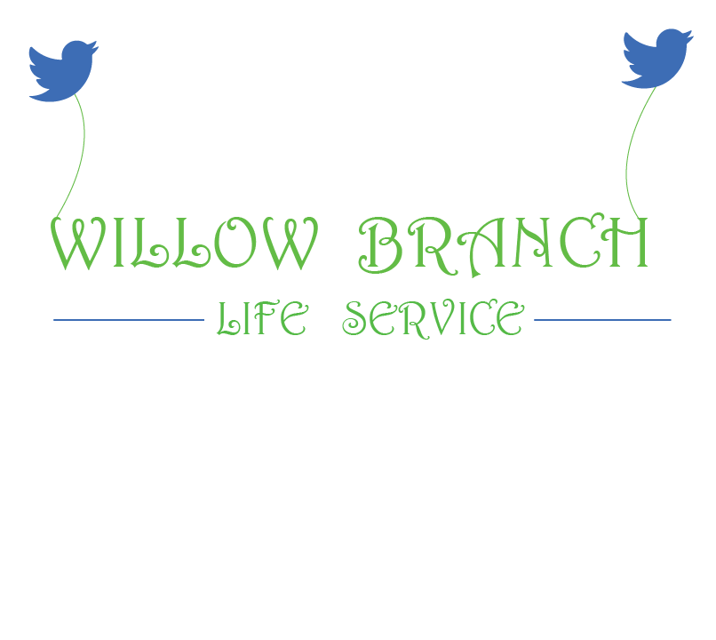 Logo Design by Hassan Kaimkhani - Entry No. 298 in the Logo Design Contest Artistic Logo Design for Willow Branch Life Service.