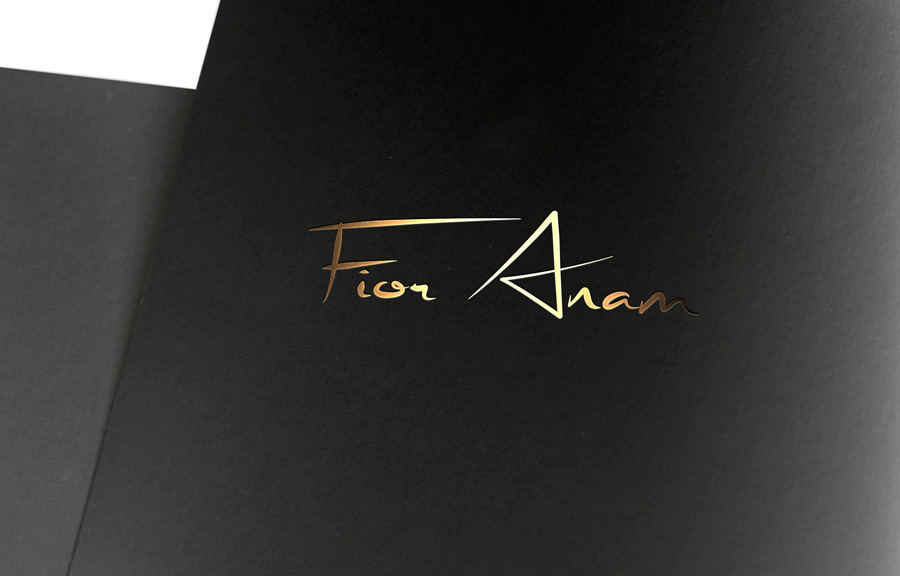Logo Design by Mirza Arif Ahammed - Entry No. 11 in the Logo Design Contest Creative Logo Design for Fior Anam.