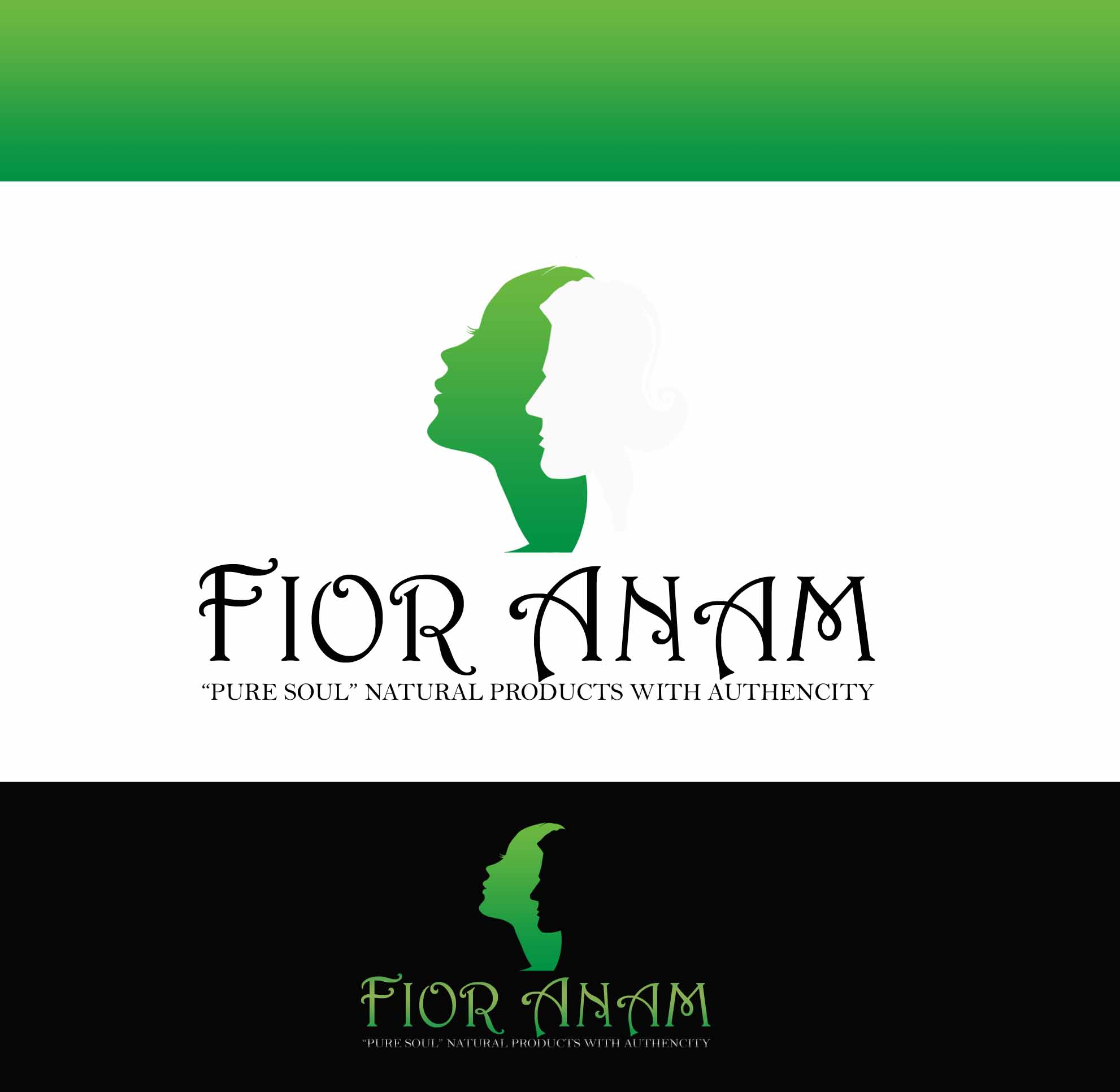 Logo Design by JSDESIGNGROUP - Entry No. 187 in the Logo Design Contest Creative Logo Design for Fior Anam.