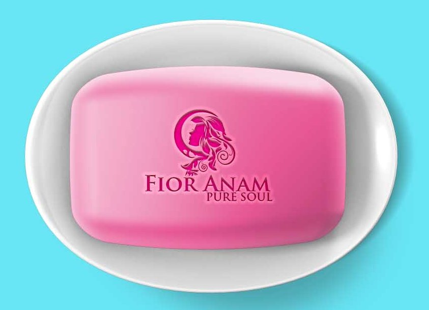 Logo Design by Private User - Entry No. 194 in the Logo Design Contest Creative Logo Design for Fior Anam.