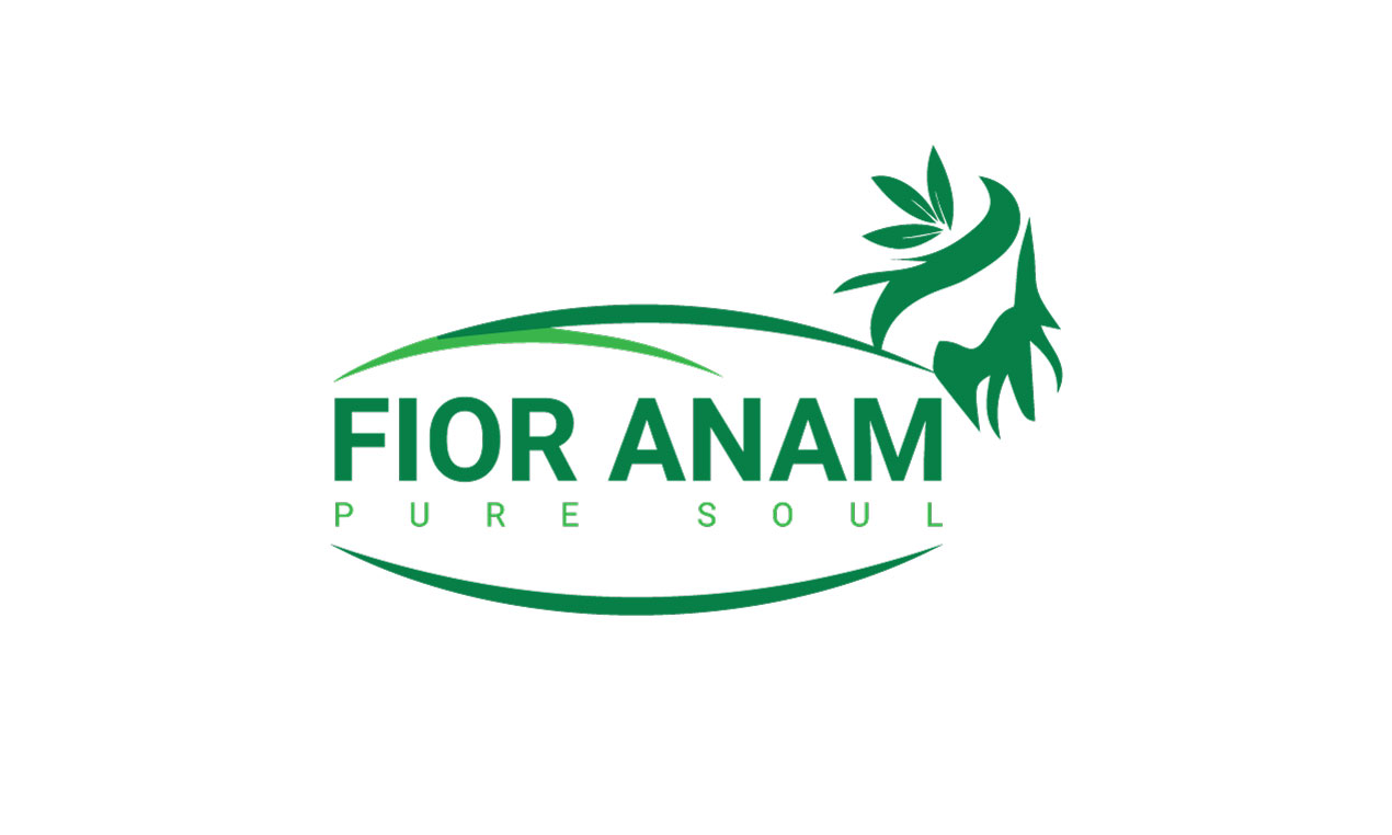 Logo Design by MD ZAHIR RAIHAN - Entry No. 224 in the Logo Design Contest Creative Logo Design for Fior Anam.