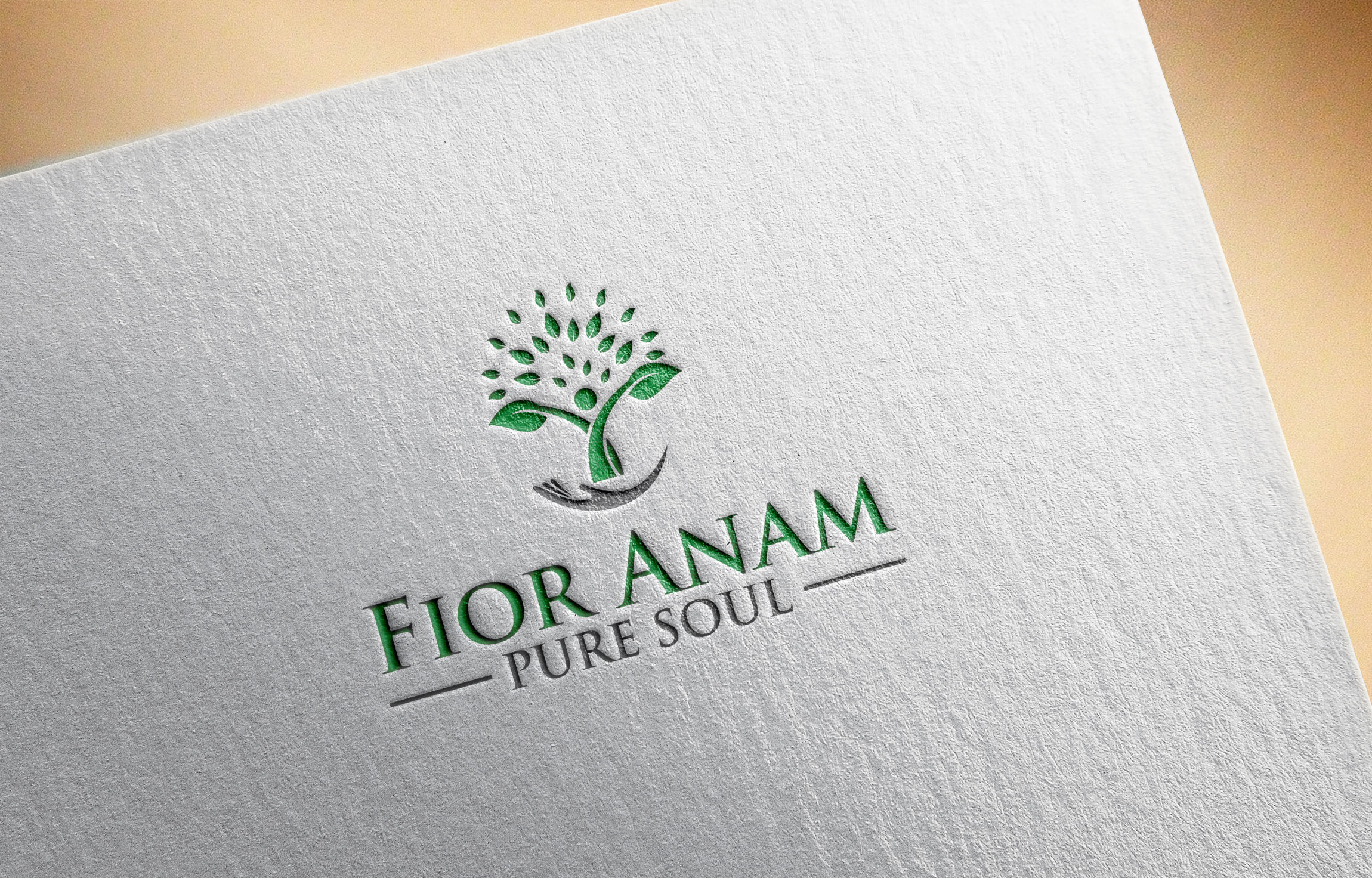 Logo Design by Raymond Garcia - Entry No. 236 in the Logo Design Contest Creative Logo Design for Fior Anam.