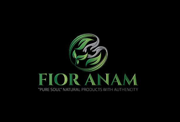 Logo Design by Melton Design - Entry No. 259 in the Logo Design Contest Creative Logo Design for Fior Anam.