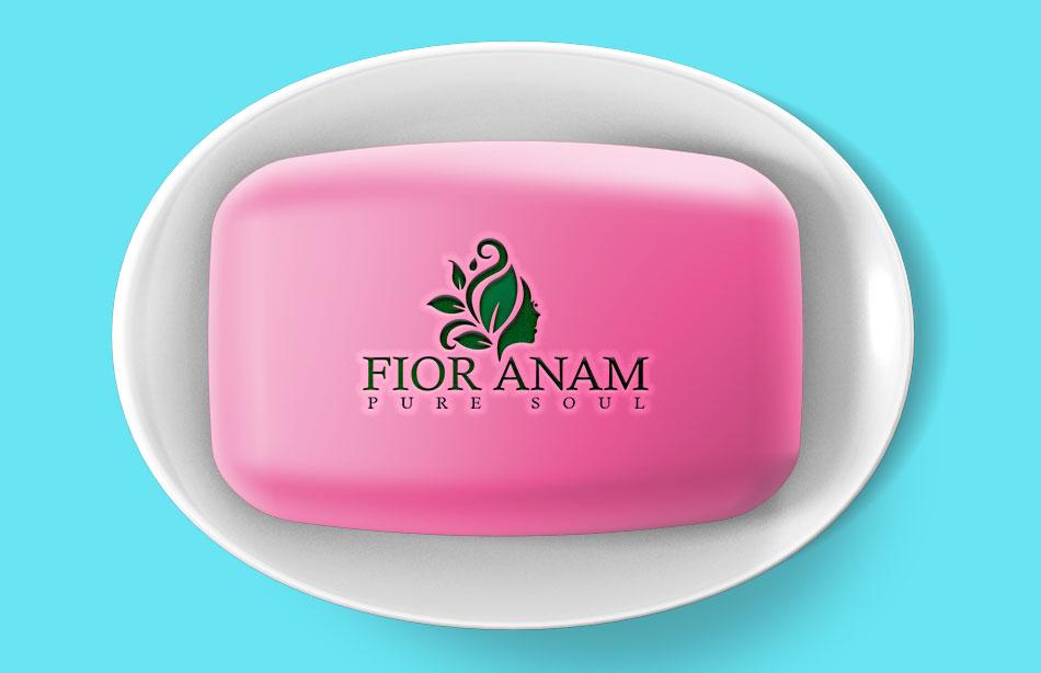 Logo Design by Private User - Entry No. 284 in the Logo Design Contest Creative Logo Design for Fior Anam.