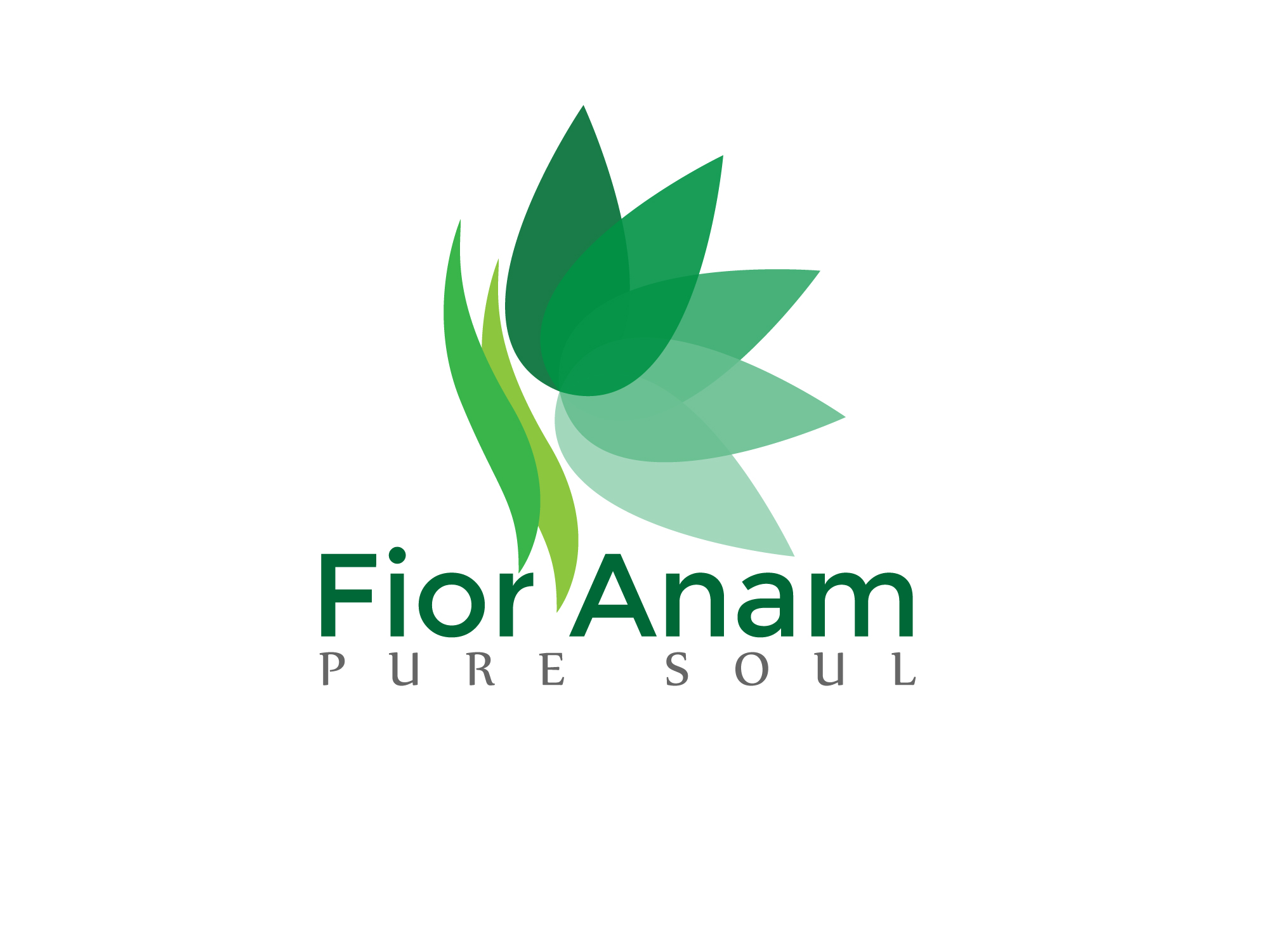 Logo Design by Private User - Entry No. 302 in the Logo Design Contest Creative Logo Design for Fior Anam.