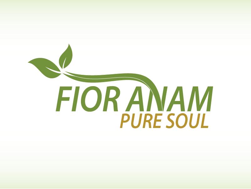 Logo Design by Private User - Entry No. 307 in the Logo Design Contest Creative Logo Design for Fior Anam.