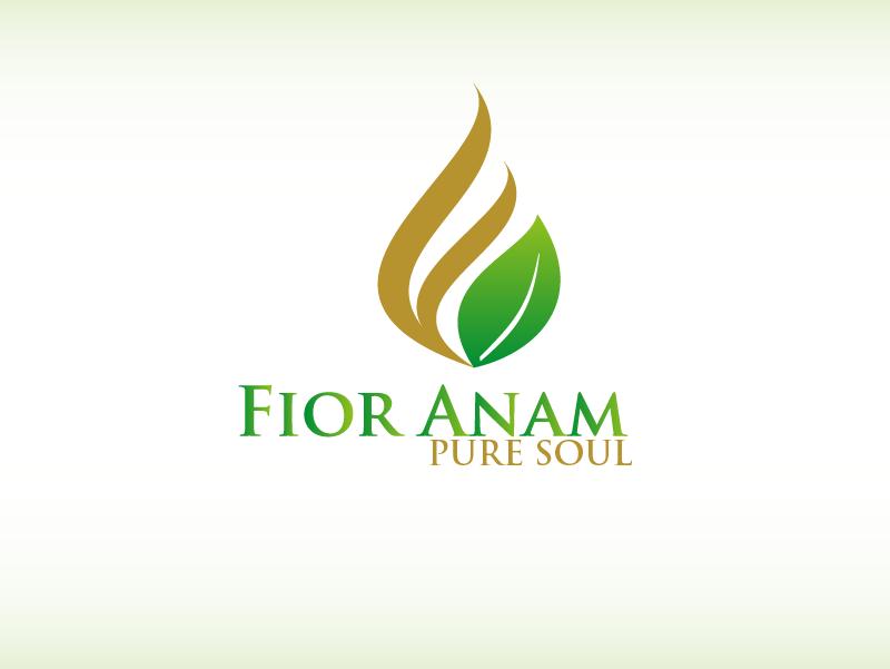 Logo Design by Private User - Entry No. 309 in the Logo Design Contest Creative Logo Design for Fior Anam.