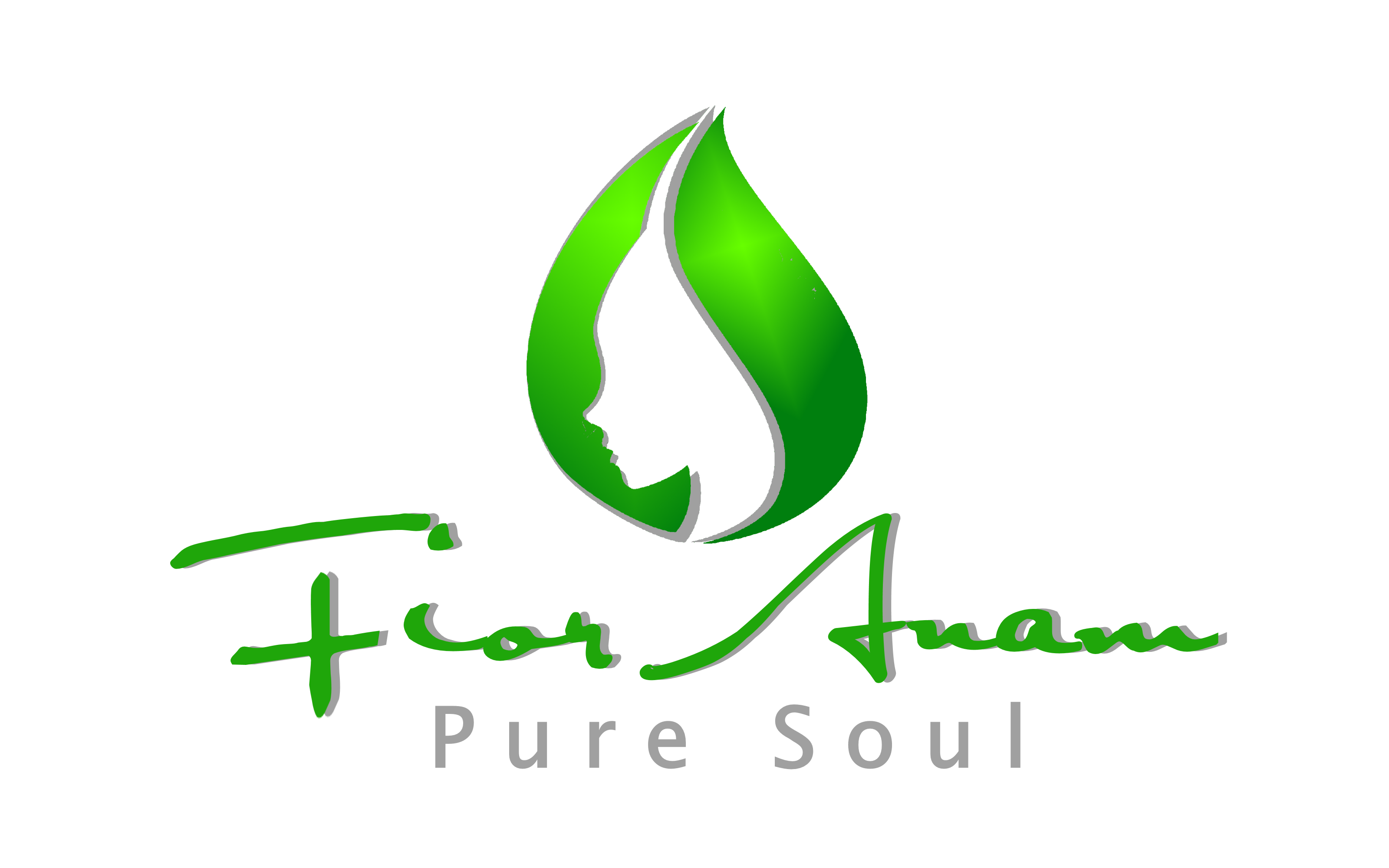 Logo Design by Roberto Bassi - Entry No. 317 in the Logo Design Contest Creative Logo Design for Fior Anam.